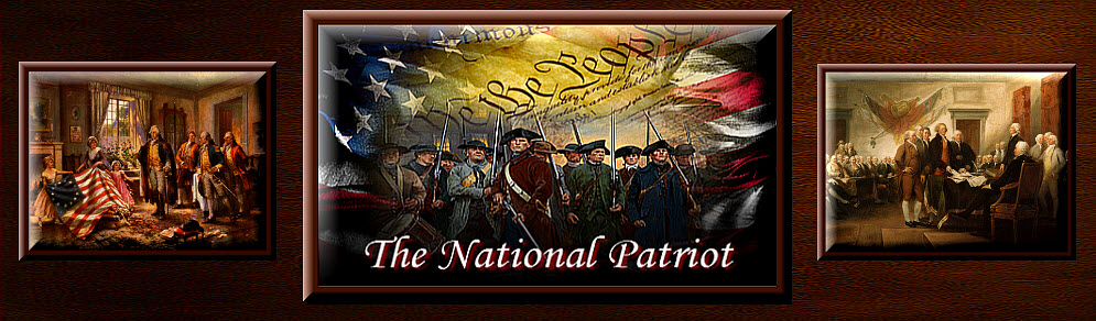 thenationalpatriot.com